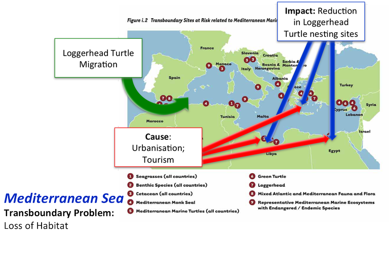 Cause and Effect (Impact) in the Mediterranean Sea